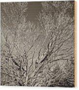 A Giant Sleeps Sepia Wood Print