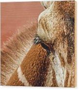 A Giraffe Wood Print