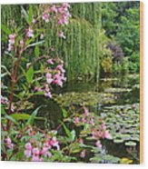 A Glimpse Of Monet's Pond At Giverny Wood Print