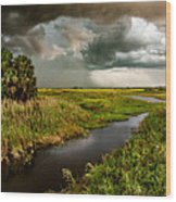 A Glow On The Marsh Wood Print