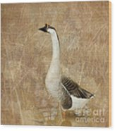 A Goose Is A Goose Wood Print by Betty LaRue