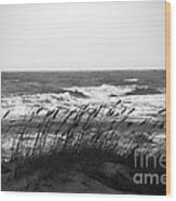 A Gray November Day At The Beach Wood Print by Susanne Van Hulst