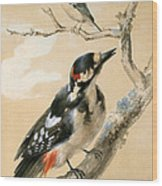 A Great Spotted Woodpecked And Another Small Bird Wood Print