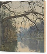 A Great Tree On A Riverbank Wood Print