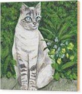 A Grey Cat At A Garden Wood Print