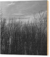 A Grey Point Of View Wood Print