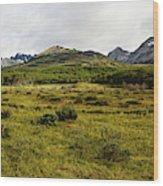 A Group Of Hikers Walk Wood Print