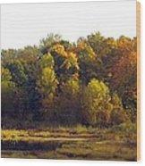 A Harvest Of Color Wood Print