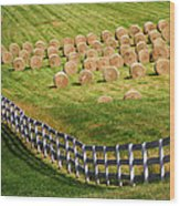 A Herd Of Hay Bales Wood Print