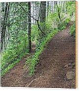 A Hiking Trail Goes Up Saddle Mountain Wood Print
