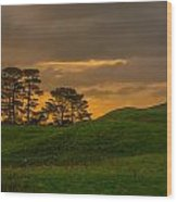 A Hobbit House Wood Print