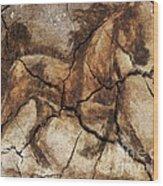 A Horse - Cave Art Wood Print