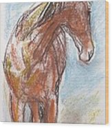 A Horse Looks Back Wood Print
