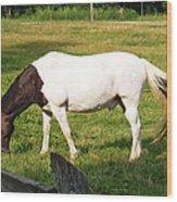 A Horse Named Dipstick Wood Print