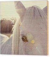 A Horse's Eyes Wood Print