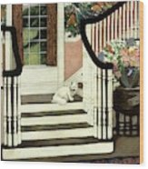 A House And Garden Cover Of A Cat On A Staircase Wood Print