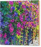 A Journey Thru Color  Wood Print