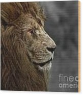 A King's Look Wood Print