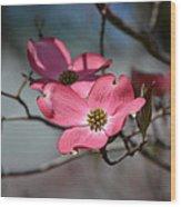 A Kiss Of Pink Wood Print