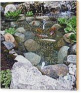 A Koi Pond For Outdoor Garden Wood Print