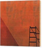 A Ladder And Its Shadow Wood Print