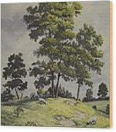 A Lazy Day For Grazing Wood Print