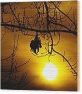 A Leaf Hanging On  Wood Print