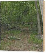 A Leisurely Stroll Through The Putnam County Veteran Memorial Park Woods Wood Print