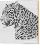A Leopard's Watchful Eye Wood Print
