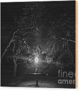 A Light In The Darkness Wood Print