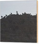 A Line Of People Walking On A Mountain Wood Print