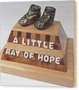 A Little Ray Of Hope  #115 Wood Print