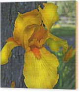 A Lively Soul Blooms Wood Print