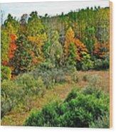 A Lofty Perch Wood Print