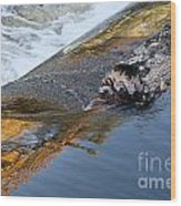 A Log Jams The Dam Wood Print by Ilene Hoffman