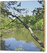 A Look At Lake Wood Print