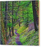 A Magical Path To Enlightenment Wood Print