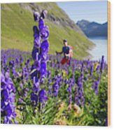 A Male Hiker In Sunny Flower Field Wood Print
