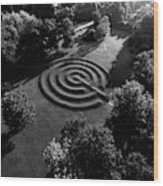 A Maze At The Chateau-sur-mer Wood Print