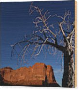 A Mesquite Trees And Buttes Wood Print