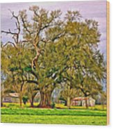 A Mighty Oak - Paint Wood Print