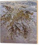 A Monet Moment IIi Wood Print