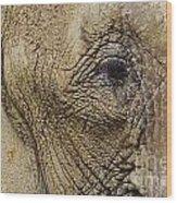 A Mothers Eye Wood Print