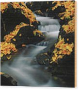 A Mountain Stream Carves A Path Wood Print