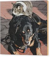 A Mouse On A Cat On A Dog In Santa Wood Print