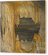 A Natural Big Mouth Wood Print