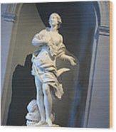 Mazzouli's Nereid Wood Print