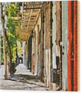 A New Orleans Alley Wood Print