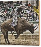 A Night At The Rodeo V8 Wood Print