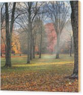A November Morning Wood Print by Bill Wakeley
